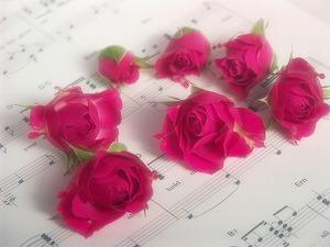 1660232薔薇と音譜と.jpg