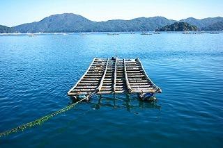 2010.10.29 山田町 山田港.jpg