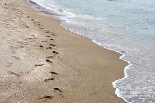 4291616砂浜の足跡 by KAZU.jpg