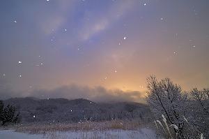 5825900ススキと降る雪.jpg