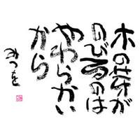 mitsuo_木の芽.jpg